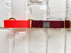 Major Darling Martingale - Bright Orange/Merlot