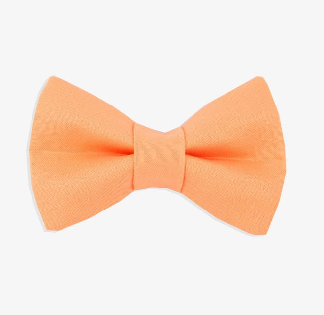 Rover Bow Tie: Orange