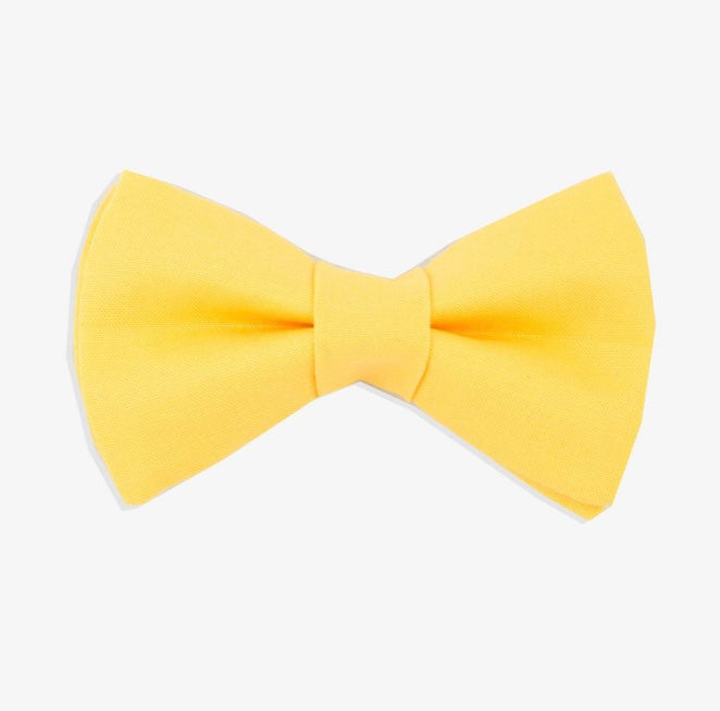 Rover Bow Tie: Yellow