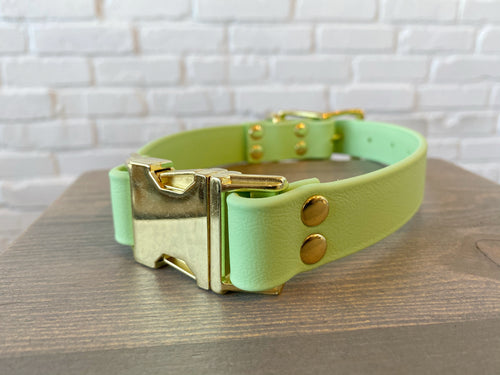 Biothane collar & leash: DogDogGoose Pastel Green