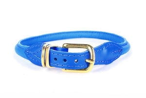 Nice Digs Rolled Leather Collar- Bright Blue
