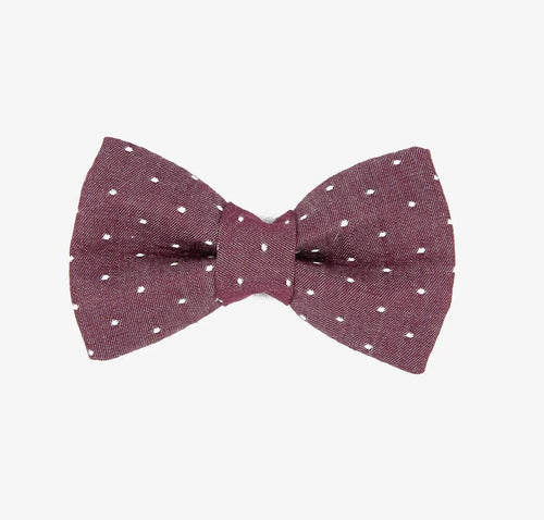 Rover Bow Tie: Purple Polka Dots