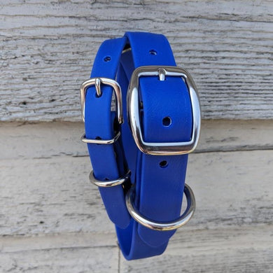 Biothane collar & leash: Blue