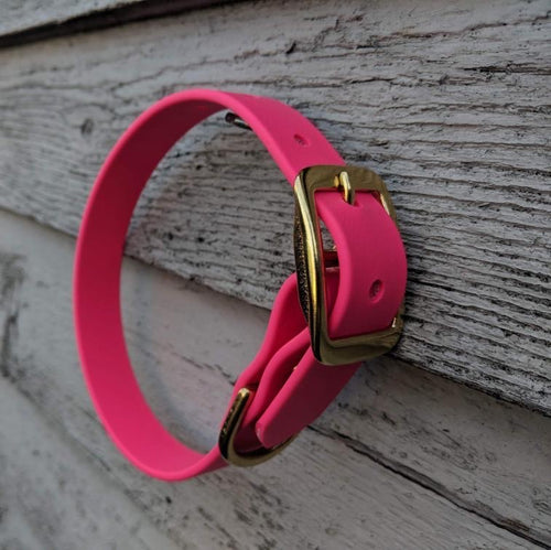 Biothane collar & leash: Dark Pink