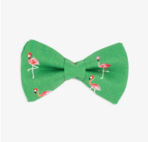 Rover Bow Tie: Green Flamingo