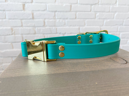 Biothane collar & leash: DogDogGoose Teal