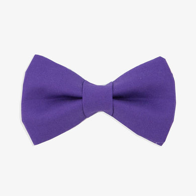 Rover Bow Tie: Purple