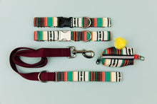 Load image into Gallery viewer, Walk in the Bark Collar: Desert Stripes