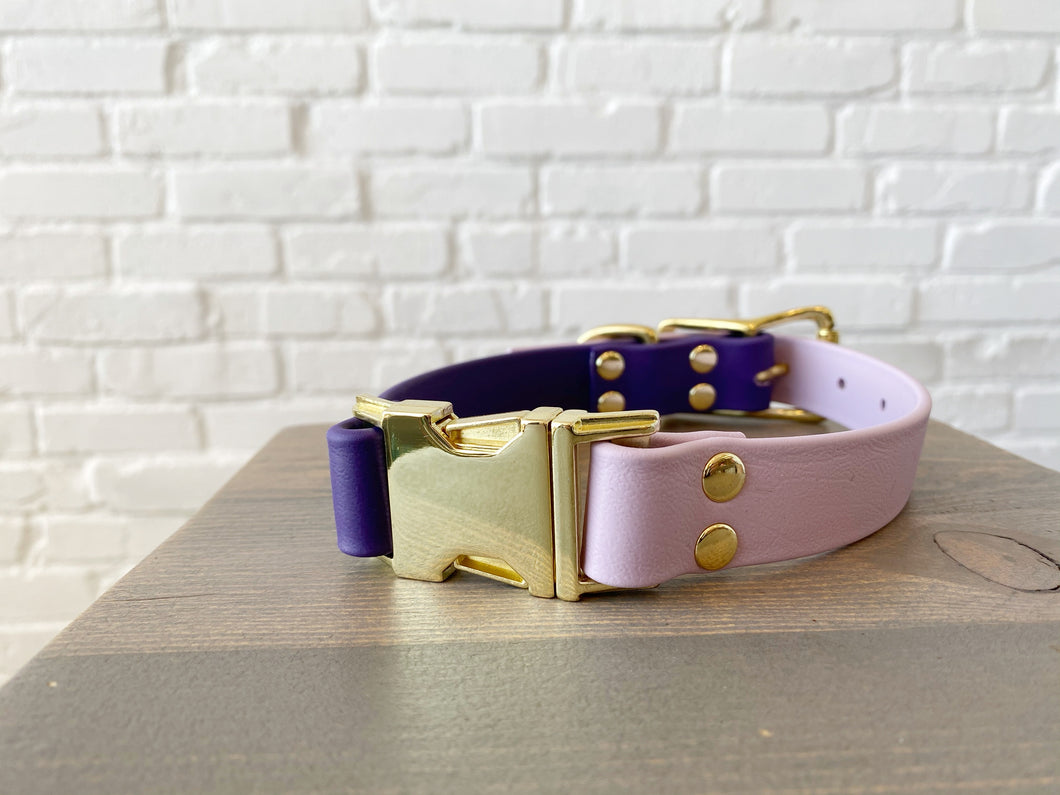 Biothane collar with Buckle: DogDogGoose Purple/Lavender