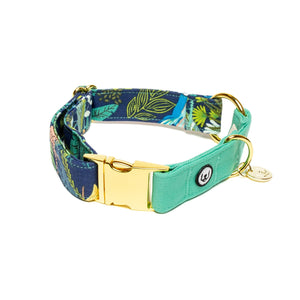 Two Tone Jungle Nights Buckle Collar