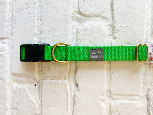 Major Darling Buckle Release Collar/Leash -Lime