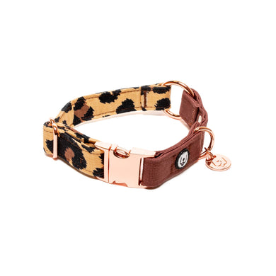Two Tone Animal Print Buckle Collar