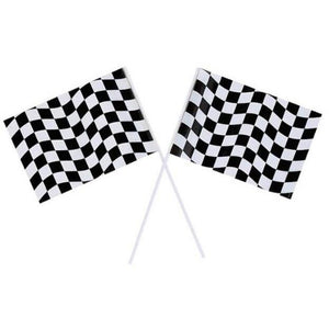 Black and White Checkered Flags (2) - Party Zone USA