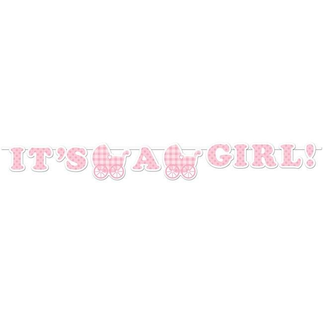 It's a Girl Gingham Ribbon Banner - Party Zone USA