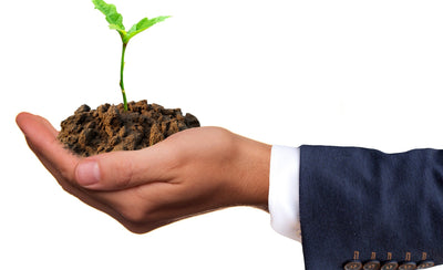 Sustainable Corporate Gifts:  Why Your Business Gifts Should Be Green