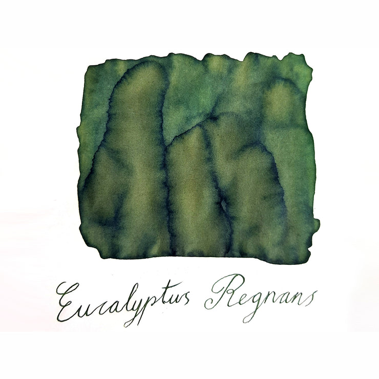 Van Dieman's The Wilderness Series Eucalyptus Regnans - Fountain Pen Ink