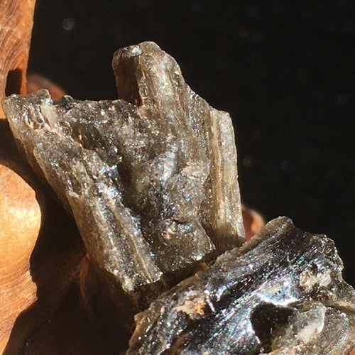 Darwinite Darwin Glass Tektite 3.1 grams-Moldavite Life