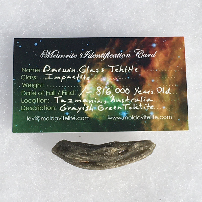 Darwinite Darwin Glass Tektite 7.4 grams-Moldavite Life