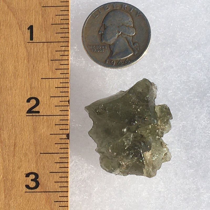 Darwinite Darwin Glass Tektite 9.5 grams-Moldavite Life