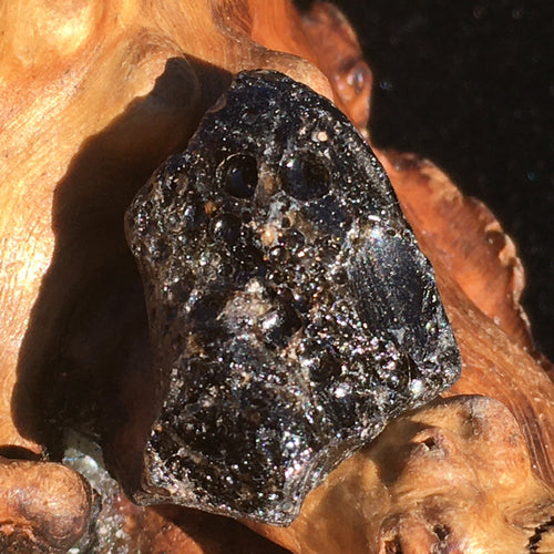 Darwinite Darwin Glass Tektite 4.4 grams-Moldavite Life