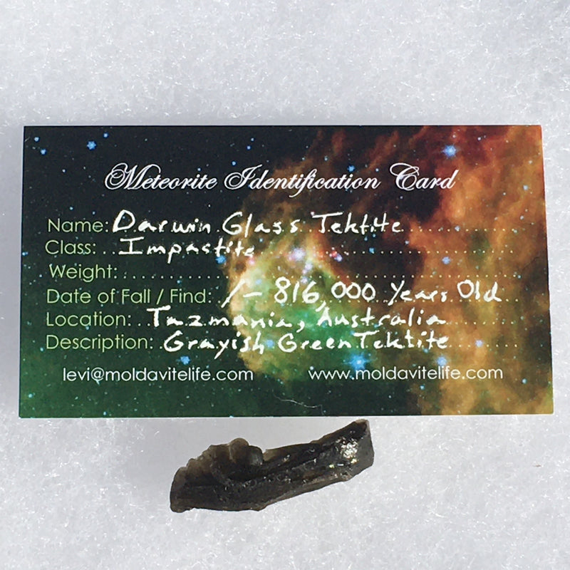 Darwinite Darwin Glass Tektite 2.9 grams-Moldavite Life