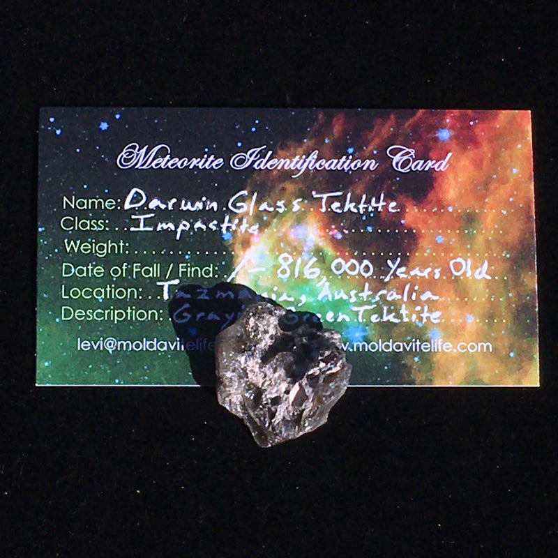 Darwinite Darwin Glass Tektite 3.8 grams-Moldavite Life