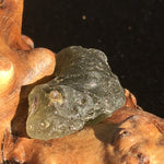 Darwinite Darwin Glass Tektite 5.3 grams-Moldavite Life