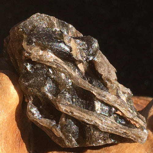 Darwinite Darwin Glass Tektite 4.3 grams-Moldavite Life