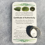 Men's Moldavite Ring Sterling Silver Philosopher-Moldavite Life