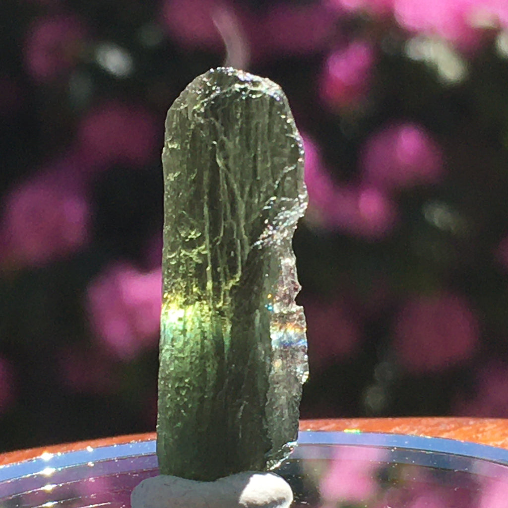 Genuine Moldavite 3.1 grams