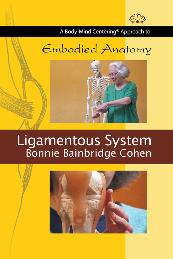Embodied Anatomy and the Ligamentous System