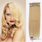CLIP IN #C101/L60-Clip in hair extensions