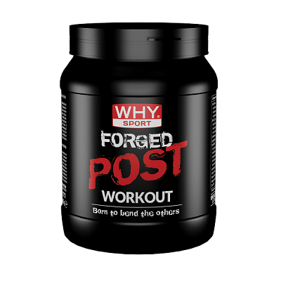 Forged Post Workout 600g - Why Sport