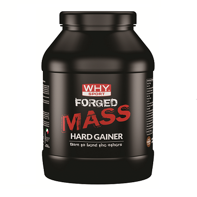 Forged Mass Hard Gainer 1000g Cacao - Why Sport