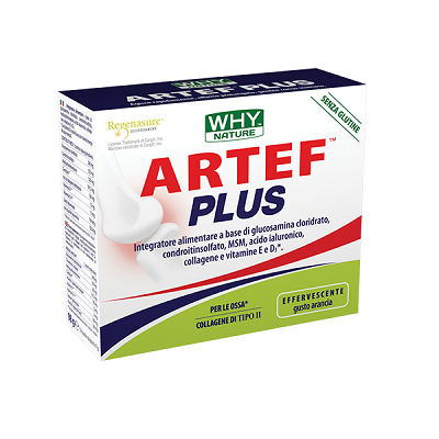 Artef Plus 14 Buste - Why Nature