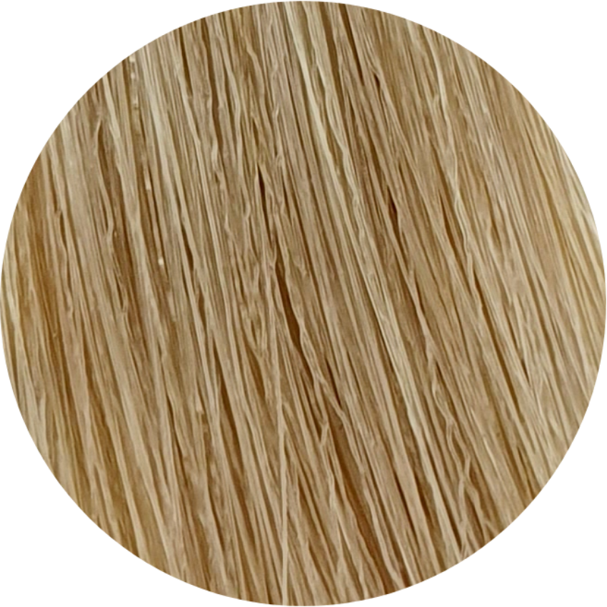 Color Touch CT 10/03-Lightest Blonde Natural Gold - WAHairSuppliers