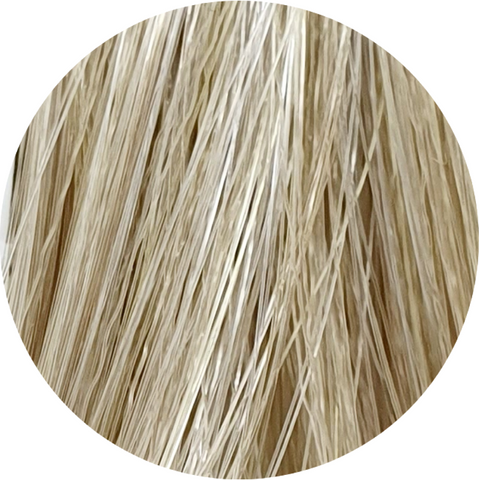 Color Touch CT 10/1-Lightest Blonde Ash - WAHairSuppliers