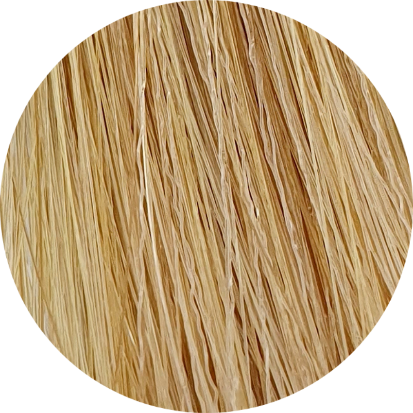 Color Touch CT 10/73-Lightest Blonde Brown Gold - WAHairSuppliers