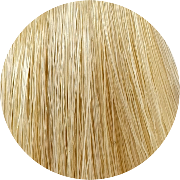 Color Touch CT 10/3-Lightest Blonde Gold - WAHairSuppliers