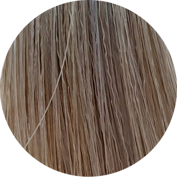 Color Touch CT 8/81-Light Blonde Pearl Ash - WAHairSuppliers