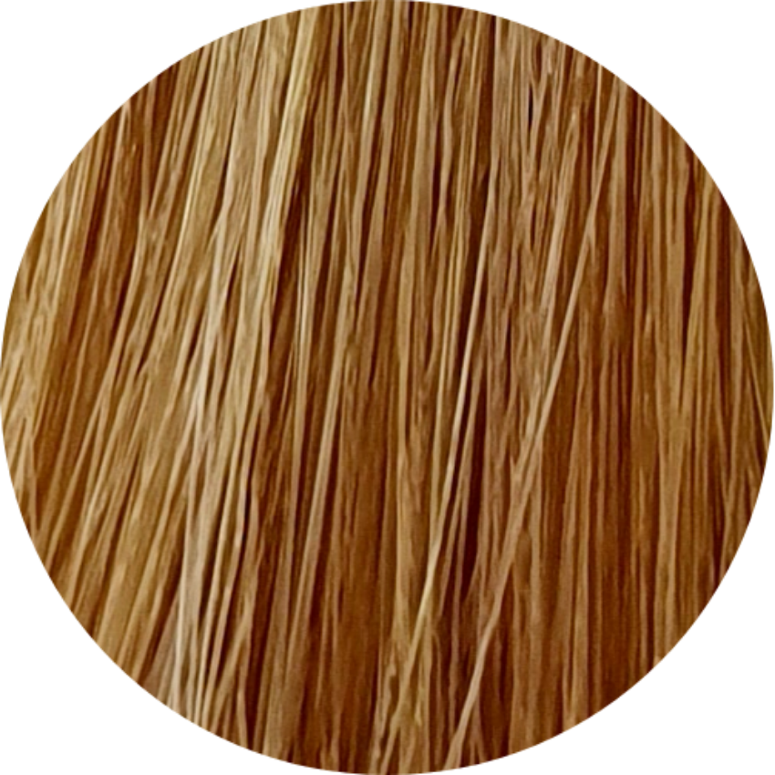 Color Touch CT 9/03-Very Light Blonde Nat. Gold - WAHairSuppliers