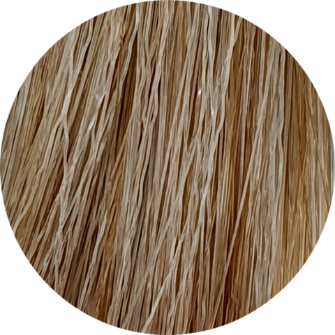 Color Touch CT 9/16-Very Light Blonde Ash Violet - WAHairSuppliers