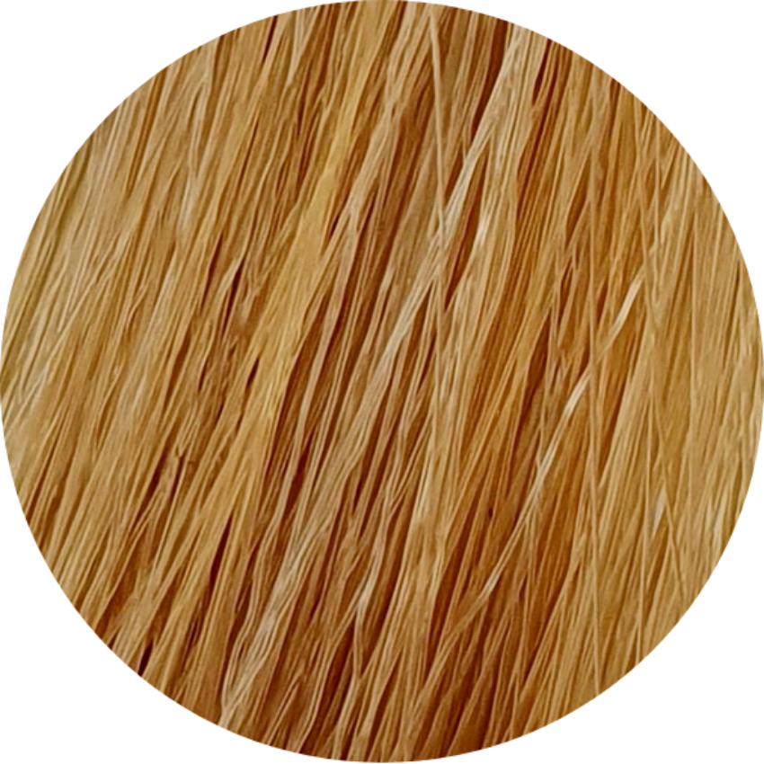 Color Touch CT 9/3-Very Light Blonde Gold - WAHairSuppliers
