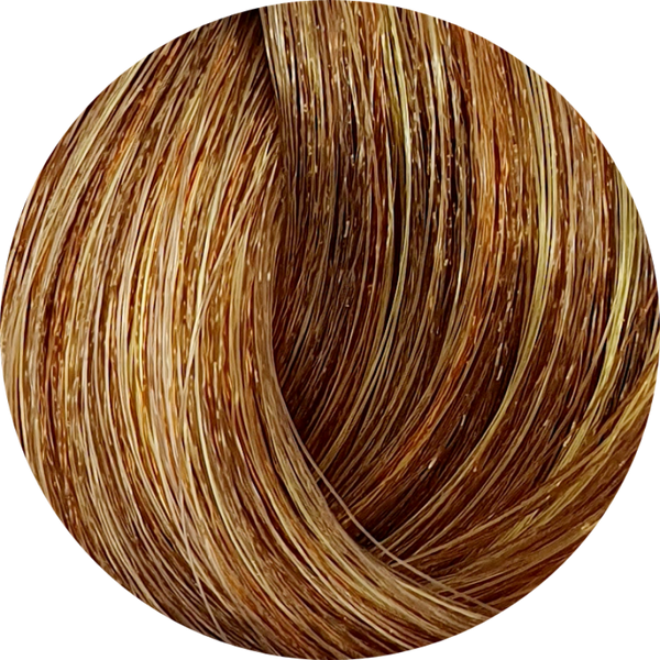 KC Permanent Colour 8.83 Light Chocolate Golden Blonde, Chocolate Series - WAHairSuppliers