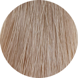 Color Touch CT 9/96 - Very Light Blonde Cendre Violet - WAHairSuppliers