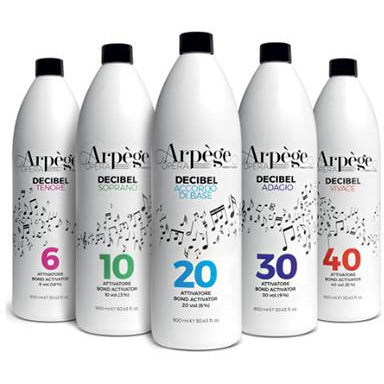 Arpege Opera Decibel Accordo Di Base 20 vol. (6%) Ammonia Free - WAHairSuppliers