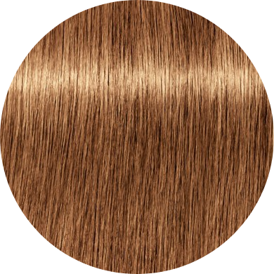 Schwarzkopf Igora Royal Disheveled Nudes 8-176 Light Blonde Cendre Copper Chocolate - WAHairSuppliers