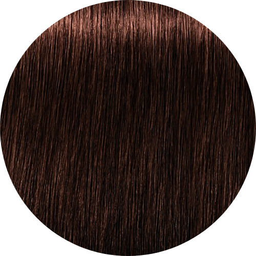 Schwarzkopf Igora Royal 5-7 Light Brown Copper - WAHairSuppliers