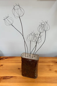 Poppies in a rusty Tin