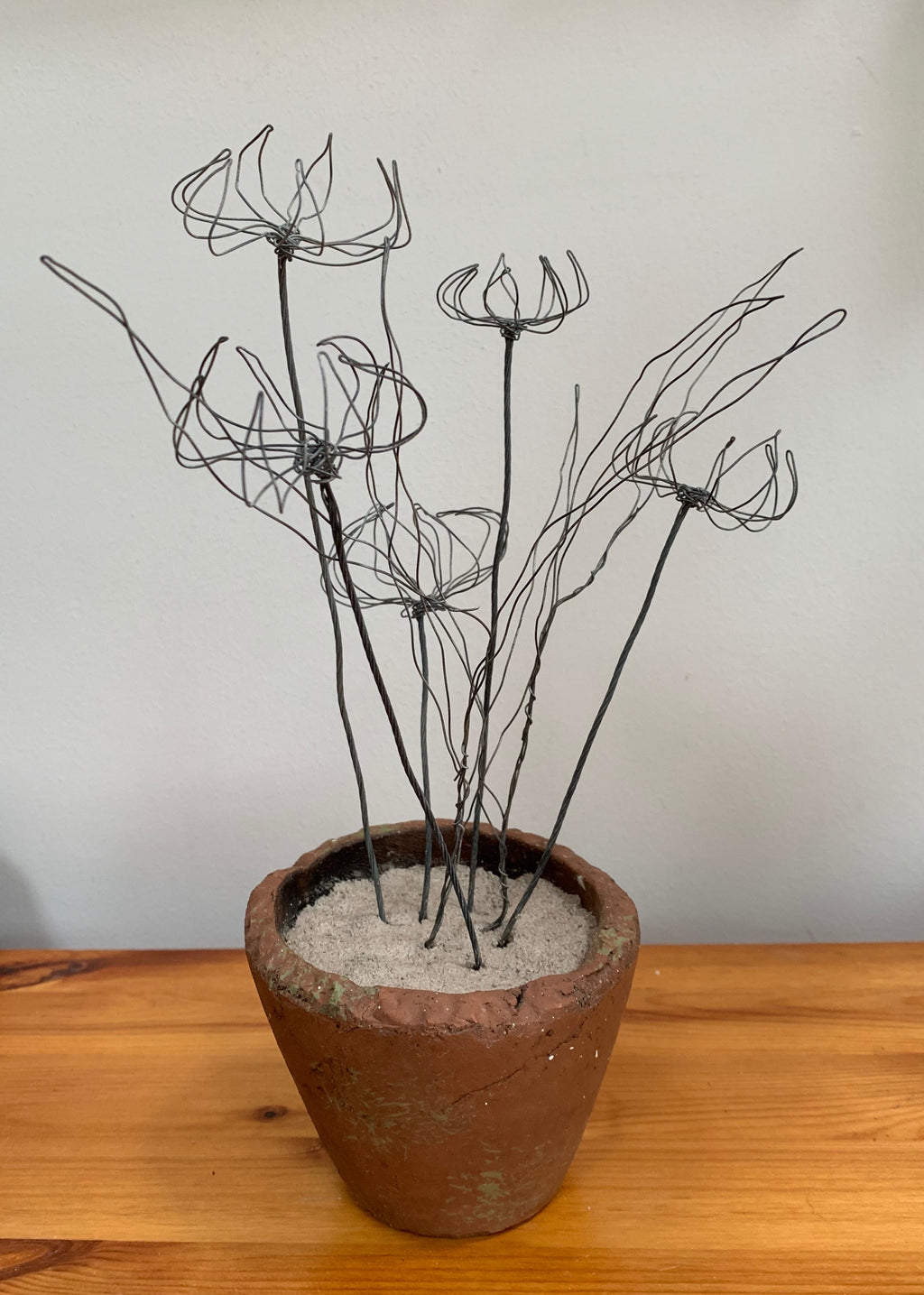 Flowers in a Clay Pot